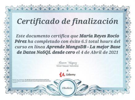 Introducción MongoDB (Udemy)