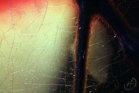 cristal_roto_by_erebyel-d8x93zt