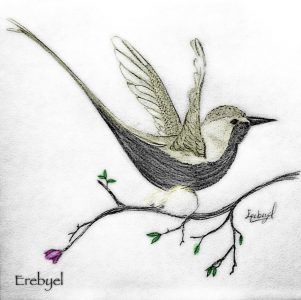little_bird_by_erebyel-d4csyjf